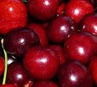 cherry medicine, cherry antioxidant
